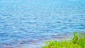 Flod i solig dag Royaltyfri Foto