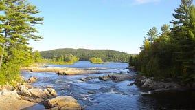 Flod i solsken i Mont Tremblant Park lager videofilmer