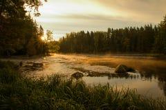 Flod i soluppgång Arkivfoto