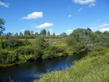Flod i sommarfält arkivfoto
