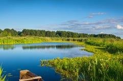 Flod i sommartid Fotografering för Bildbyråer