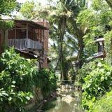 Flod i Sorong Arkivbilder
