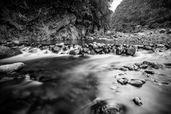Flod i svartvitt Arkivbilder