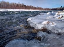 Flod i taigaen siberia royaltyfri foto