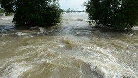 Flod i Thailand HD arkivfilmer