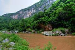 Flod i tropisk djungelkanjon Arkivfoto