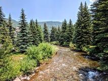 Flod i Vail Colorado royaltyfri bild