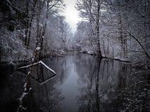 Flod i vinter Arkivbild