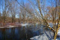 Flod i vintertiden fotografering för bildbyråer