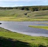 Flod i Yellowstone Fotografering för Bildbyråer