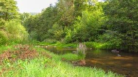 Flod Iskar i närheten av Pancharevo i Sofia-stad region lökformig Fotografering för Bildbyråer