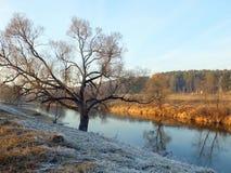 Flod Istra Royaltyfria Bilder