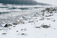 Flod med att driva för is och den kala skogen som är synliga på andra sidan Fotografering för Bildbyråer
