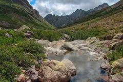 Flod med berglandskap på bakgrund Royaltyfri Foto