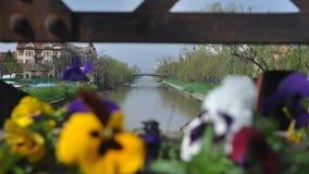 Flod med den oskarpa blomman på en bro arkivfoto