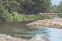 Flod med den steniga kustlinjen som omges av skogen Arkivfoto