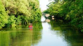 Flod med skogen Royaltyfri Bild