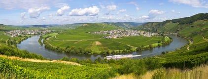 Flod mosel i trittenheim royaltyfria foton