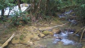 Flod nära Laguna Brava stock video