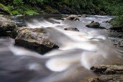 Flod nära Loch Lomond Royaltyfria Bilder