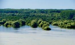 Flod nära Novi Sad royaltyfri bild