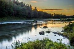 Flod nära skog på lång exponering royaltyfria foton