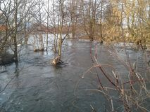 Flod natur, skönhet Arkivfoto