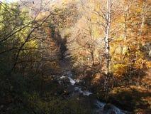 flod Neretvica Royaltyfri Foto