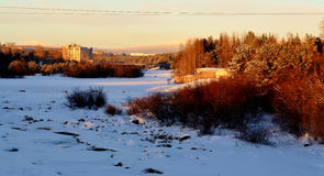 flod Niva Fotografering för Bildbyråer