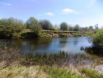 Flod Nr Crookham norr Northumberland, England Royaltyfria Foton