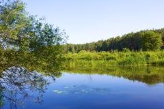 Flod Obra på den soliga dagen royaltyfria foton