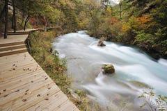 Flod och bana Arkivfoto