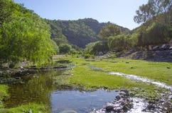 Flod och berg Arkivbild