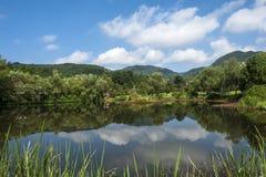 Flod och berget Royaltyfria Bilder