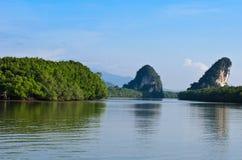 Flod och berget Royaltyfria Foton