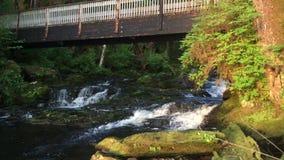 flod och bro för 4K Alaska på skymning arkivfilmer