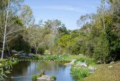 Flod och färgrik skog för höst Royaltyfria Foton