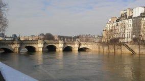 Flod och insnöade Paris Arkivbild