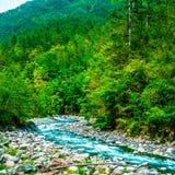 Flod och landskap arkivbilder