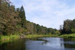Flod och natur Arkivfoton