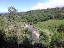 Flod och risfält Royaltyfria Bilder