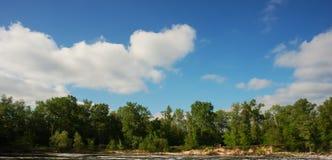 Flod och skog Royaltyfri Fotografi