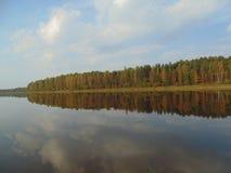 Flod och skog Royaltyfri Foto