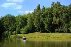 Flod och skog royaltyfria bilder
