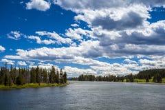 Flod- och skoglandskap Royaltyfri Bild