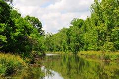 Flod och träd på Horton Slough arkivbilder