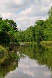 Flod och träd på Horton Slough royaltyfria foton