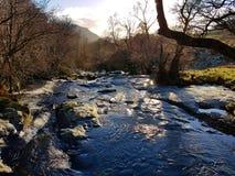 Flod- och vinterträd, Aira styrka, sjöområde arkivfoto