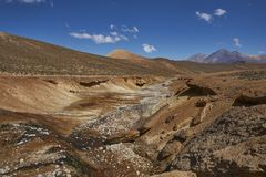 Flod på Altiplanoen, Chile royaltyfri fotografi