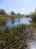 Flod på Crookham, Northumberland, England Royaltyfria Bilder